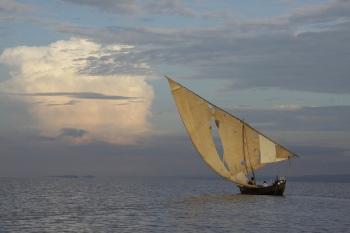 Torn Sail